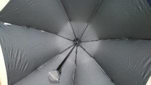 超撥水生地の傘