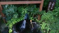 箱根の天成園で日帰り温泉に入ってきた