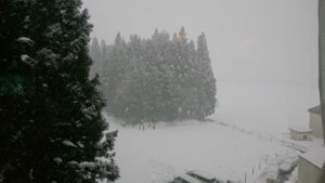 新潟は雪がすごい