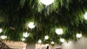 遊び場の天井